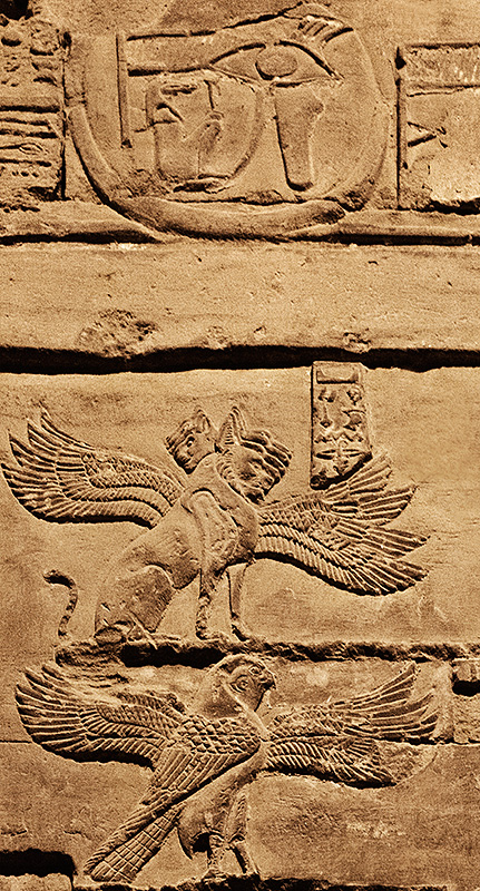 Hieroglyphics Many Wings