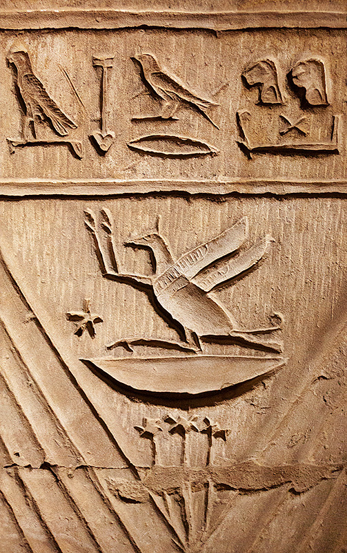 Bird Hieroglyphics 2